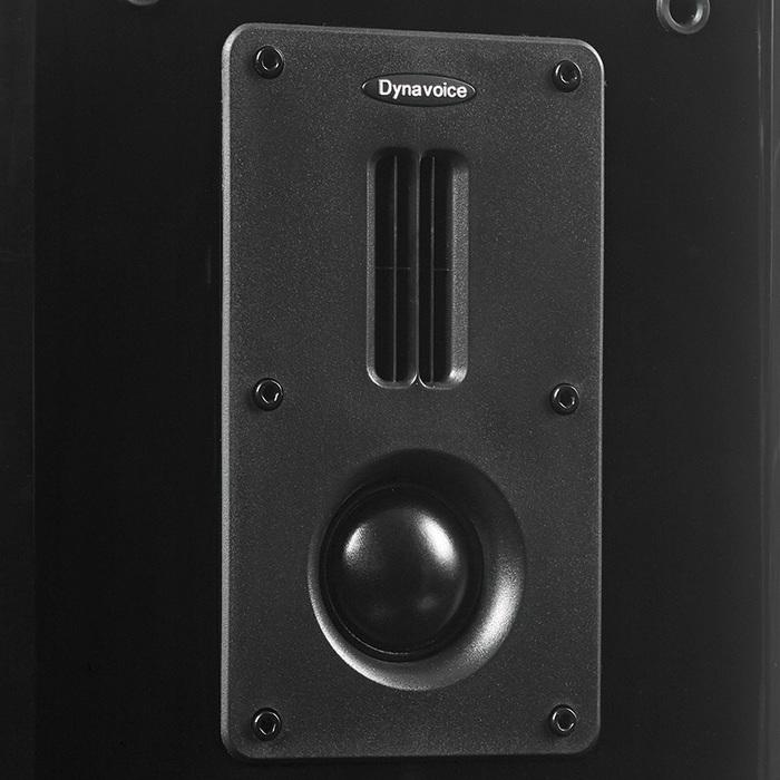 Dynavoice Definition DM-6