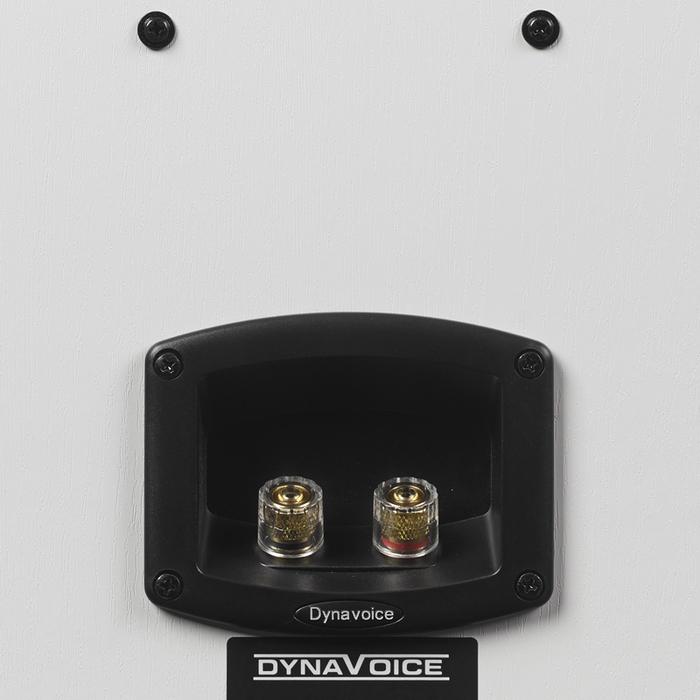 Dynavoice Magic S-4 EX
